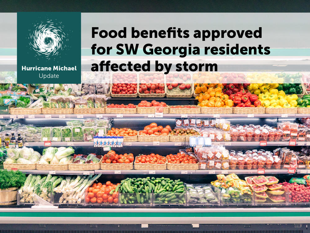 Sw Georgia Approved For Disaster Snap Georgia Department